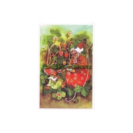 pohlednice - Jahodová babička