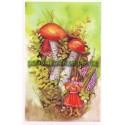 pohlednice - Křemenáč