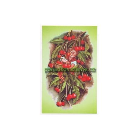 pohlednice - Lesní třešeň