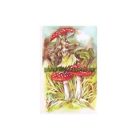 pohlednice - Muchomůrka červená